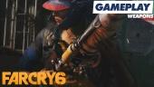 《極地戰嚎 6》- 武器 - Gameplay