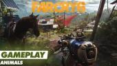 《極地戰嚎 6》- 動物 - Gameplay