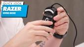 Razer Viper 8KHz  - 快速查看