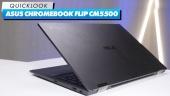 ASUS Chromebook Flip CM5500 -  快速查看