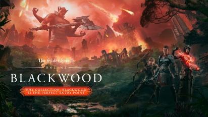 《上古卷軸 Online》- 為什麼《Blackwood》是完美的切入點