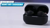 Sony WF-1000XM4 - 快速查看