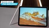 iPad Mini (2021) - 快速查看
